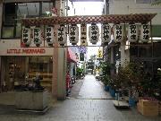 yamasika-new0810-1.jpg