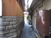 yamasika-new0810-2.jpg