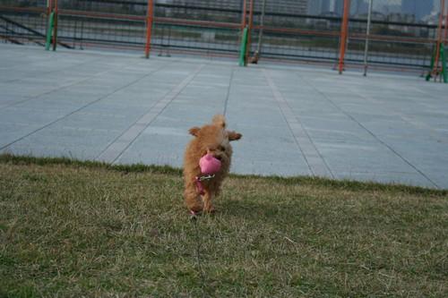 20081117_16.jpg