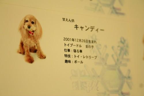20090109_11.jpg