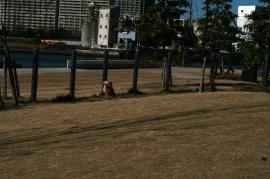 20090114_13.jpg
