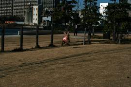 20090114_15.jpg