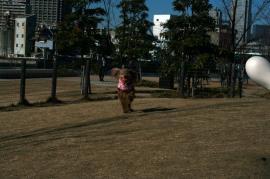 20090114_16.jpg