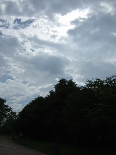 20090608_18.jpg