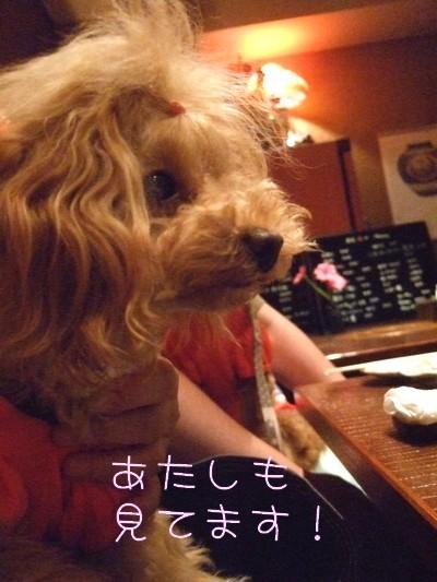 20090716_4.jpg