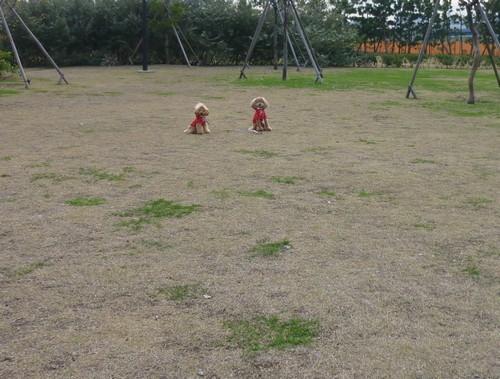 20091120_6.jpg