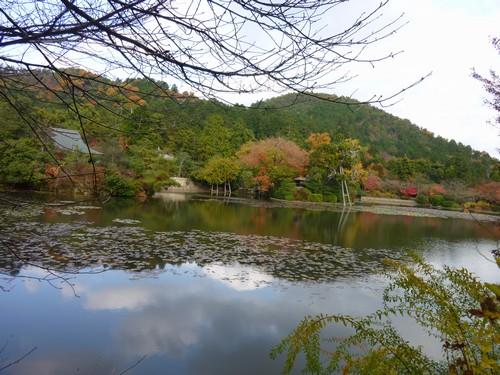 20091205_11.jpg