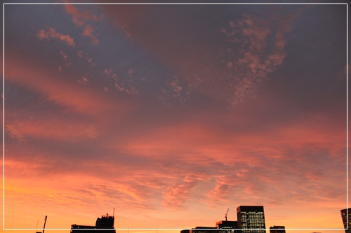 20111020_2.jpg