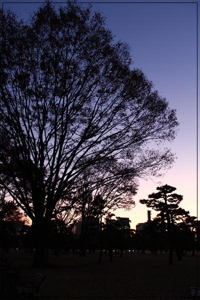 20120126_8.jpg