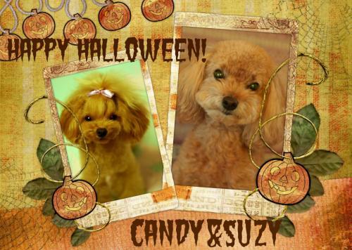 HalloweenCandySuzy.jpg