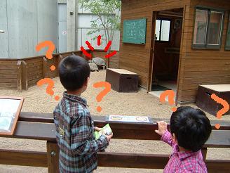淡水魚水族館2