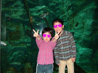 淡水魚水族館4