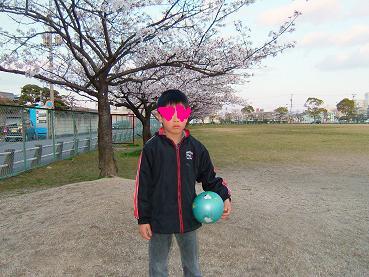 桜2008_3