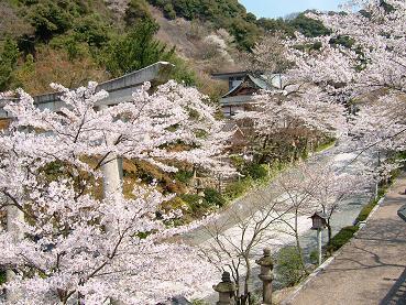 春のお祭り2008_3