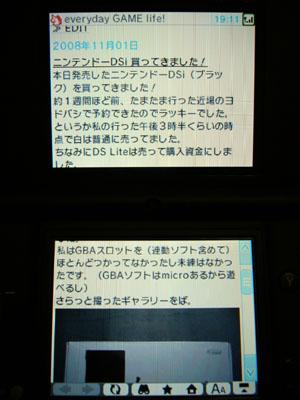 DSi_12.jpg