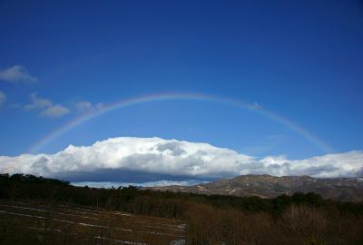 rainbow120223_09.jpg