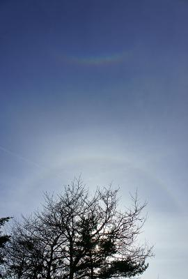 sky111127_05.jpg