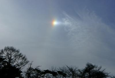 sky111127_06.jpg