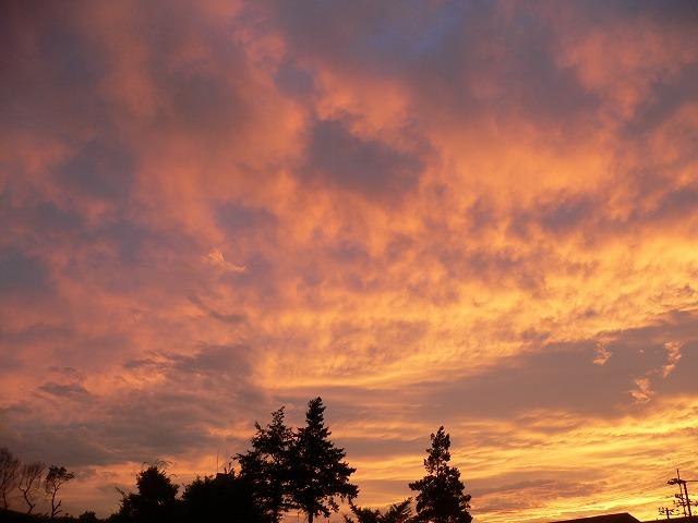 とても綺麗な夕焼け