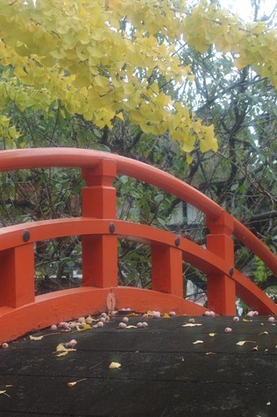 下鴨神社 秋の特別拝観7