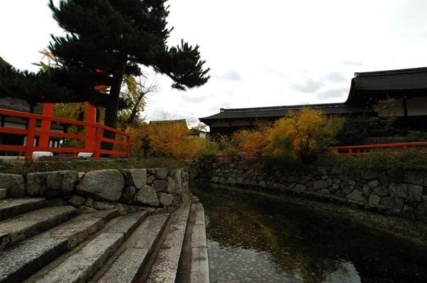下鴨神社 秋の特別拝観9