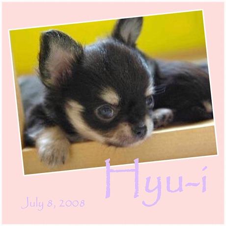 2008-07-08.jpg