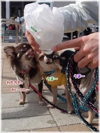 2008-11-02-01.jpg