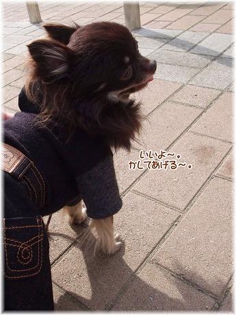 2008-11-02-70.jpg