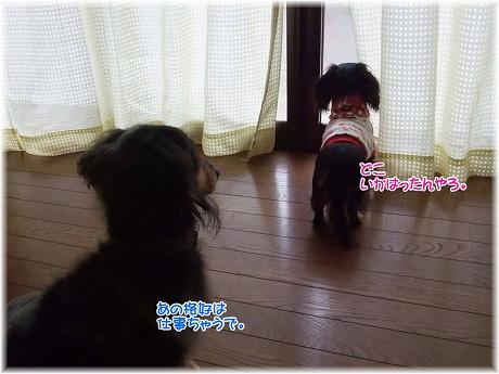 2008-11-16-03.jpg