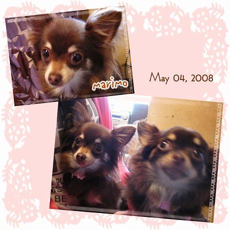 2008-11-24-39.jpg