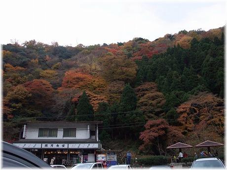2008-11-30-11.jpg