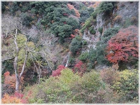2008-11-30-13.jpg