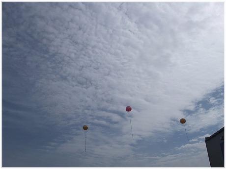 2009-03-08-01.jpg