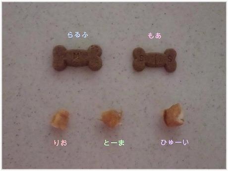 2009-06-20-17.jpg