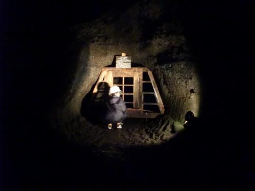 洞窟311.3