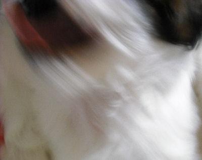 20091028.jpg