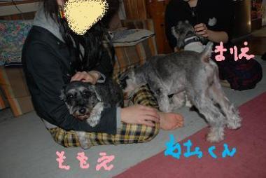 DSC_0159_20091012220618.jpg