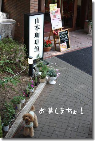 0607-8.jpg