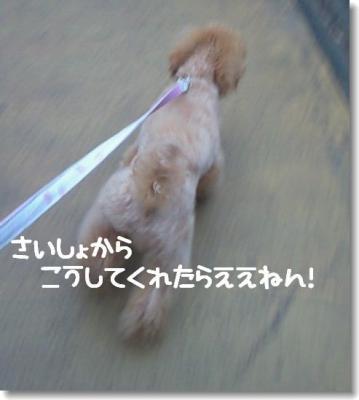 200811031607001.jpg