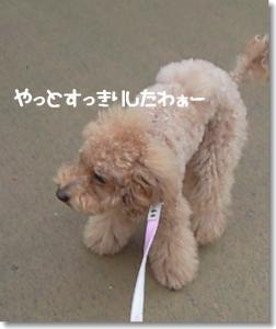 200811081501001.jpg