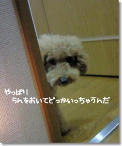 200811081612001.jpg