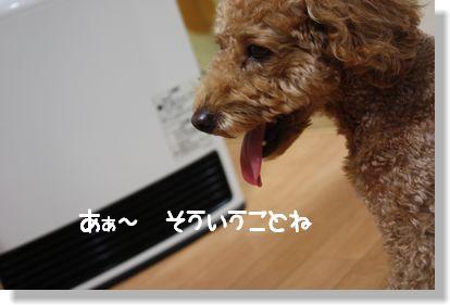 IMG_1078.jpg