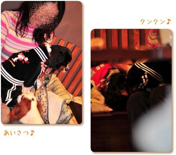 2008.11.8(えにわんキャバ会) 083a