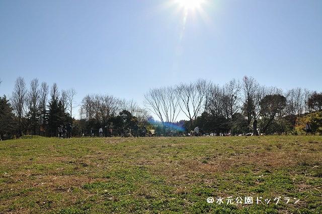 2008.11.30(水元公園キャバオフ会) 065