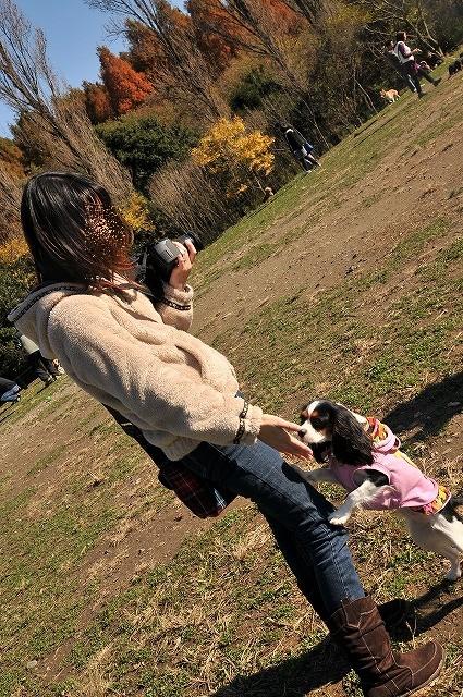 2008.11.30(水元公園キャバオフ会) 069