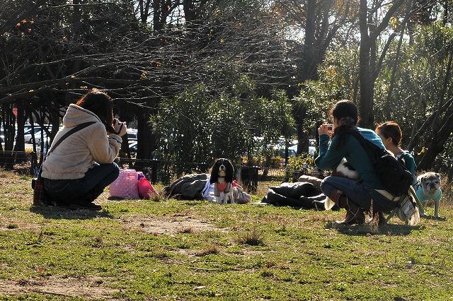 2008.11.30(水元公園キャバオフ会) 157