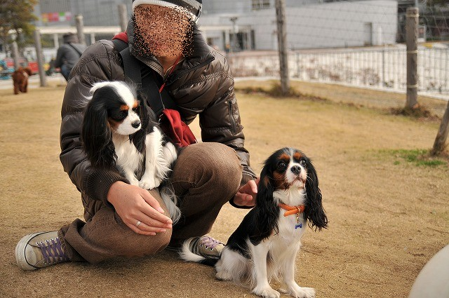 2008.12.13(初まんまちゃん) 030
