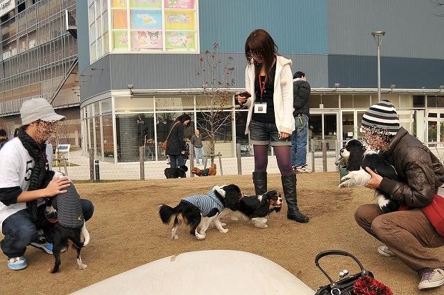 2008.12.13(初まんまちゃん) 025