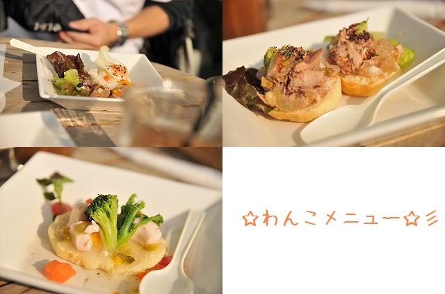2008.12.13(初まんまちゃん) 074a