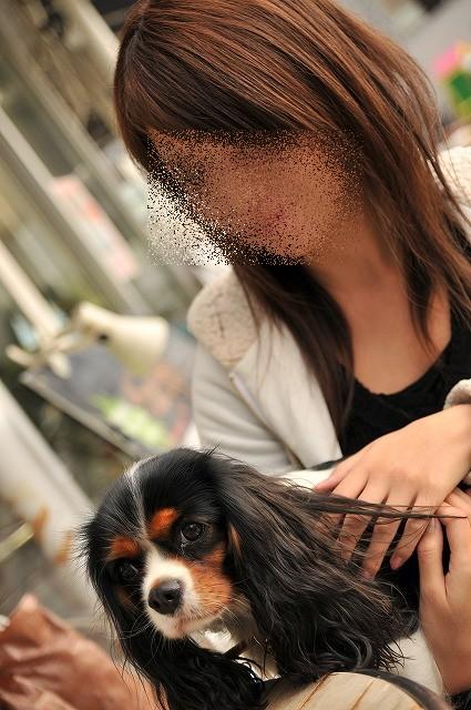 2008.12.13(初まんまちゃん) 105